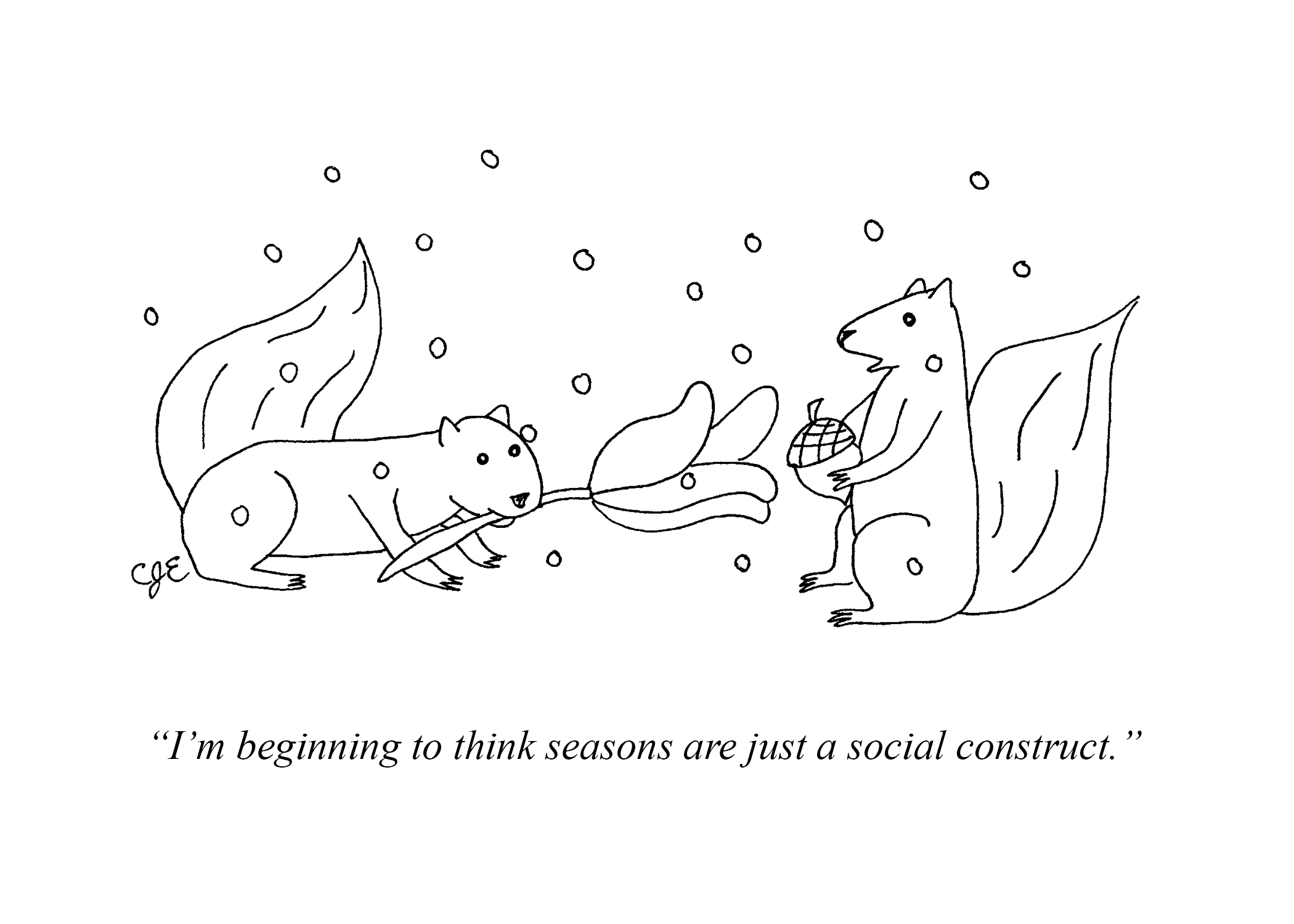SeasonalSquirrels